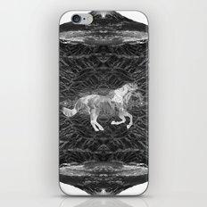 Ciel du Cheval iPhone & iPod Skin