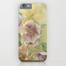 Hellebore iPhone 6s Slim Case