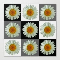 Nine Daisies Pop Art Canvas Print