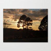 Sunset Trees 2016 Canvas Print