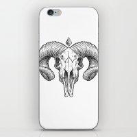 Skull Sketch iPhone & iPod Skin