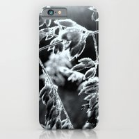 Drenched with Dew iPhone 6 Slim Case