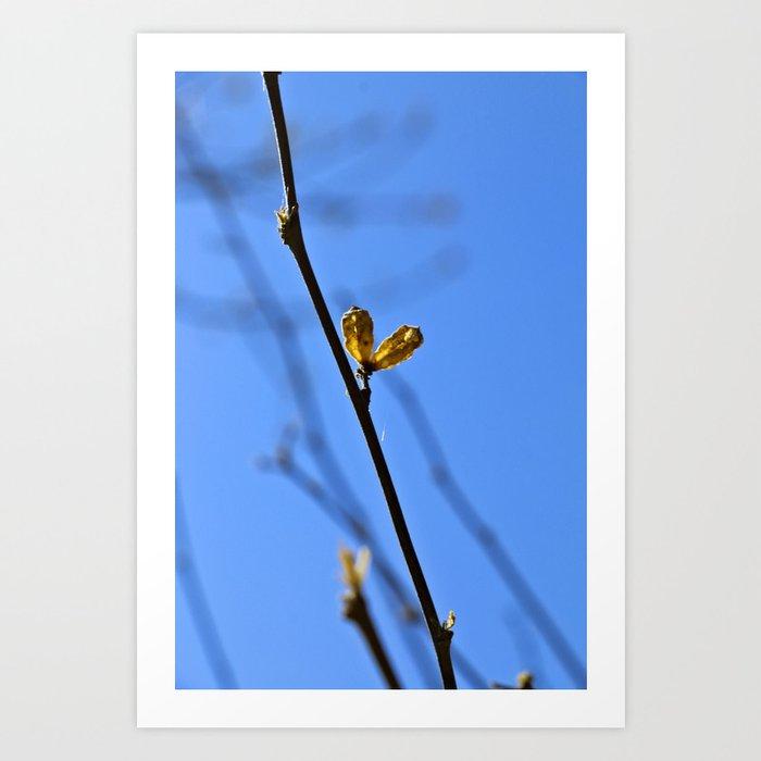 pair-of-life-prints.jpg