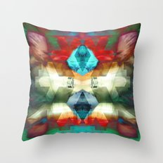 2012-09-05 00_26_24 Throw Pillow