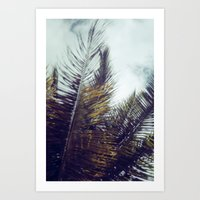 Palm Sky II Art Print