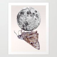 In Which A Moth Is Entic… Art Print