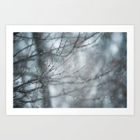 Snowy Winter Branches Art Print