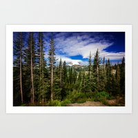 Mt Rainier National Park Art Print