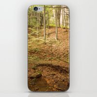 Life Is Uphill iPhone & iPod Skin
