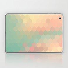 PEACH AND MINT HONEY Laptop & iPad Skin