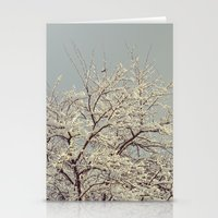 Snow On Acacia Stationery Cards