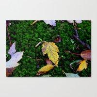 Mossy Fall Canvas Print