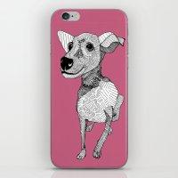 Whipper iPhone & iPod Skin