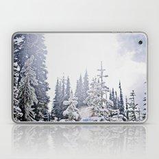 Fresh Mountain Snow Laptop & iPad Skin