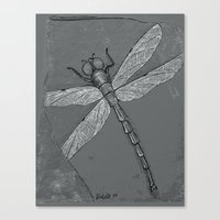 Petrified Dragonfly Canvas Print
