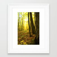 Autumnal Pathway Framed Art Print
