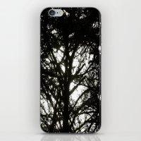 Peekaboo iPhone & iPod Skin