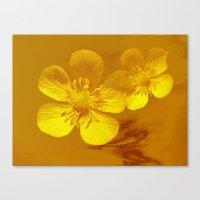 FLOWERS - Bonnie Butterc… Canvas Print