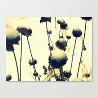 wind in the willows Canvas Print