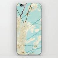 Soft Spring iPhone & iPod Skin