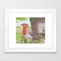 Robin Redbreast And Ging… Framed Art Print
