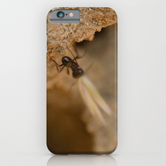 Romantic Ant iPhone & iPod Case