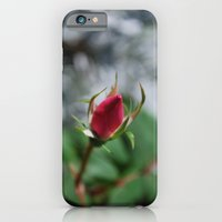 Rose Bud iPhone 6 Slim Case