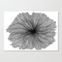 Jellyfish Flower B&W Canvas Print