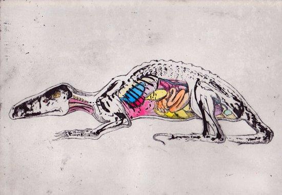Anatomy of a Beast Art Print