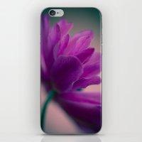 Standing Ovation iPhone & iPod Skin