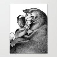 Mother Cat Canvas Print