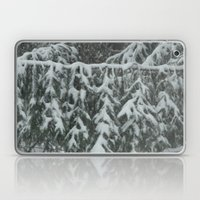 Natrual Decor Laptop & iPad Skin