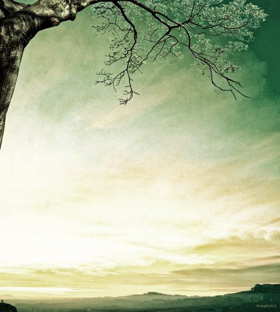 Spring Dawn Art Print