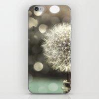 Dandelion In A Jar iPhone & iPod Skin