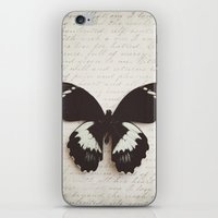 Papilio Aegus Butterfly iPhone & iPod Skin