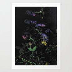 from the dark Art Print