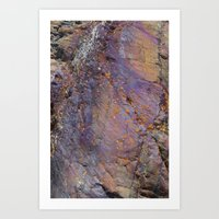 Colors Of The Earth Art Print