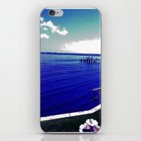 Verano Fresco iPhone & iPod Skin