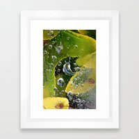 PhotoYero Framed Art Print