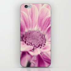Aster Pink 83 iPhone & iPod Skin