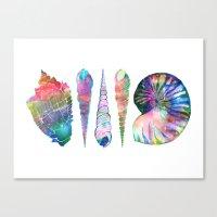 SEASHELL LOVE I Canvas Print