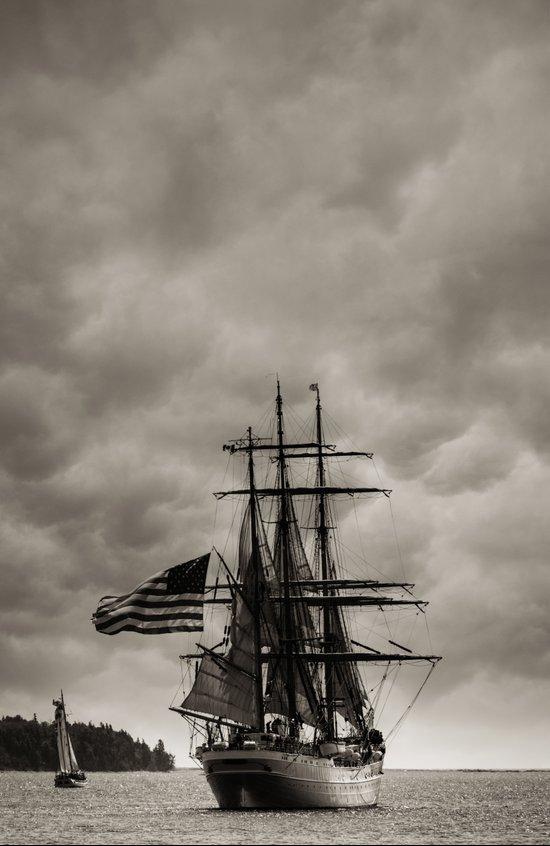 Parade of Sail Art Print