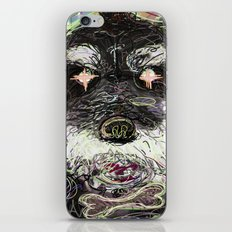 02 iPhone & iPod Skin