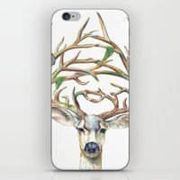 Buck iPhone & iPod Skin