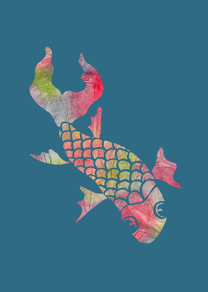 Rainbow koi fish canvas print by elephant trunk studio for Rainbow koi fish