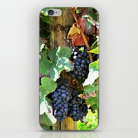 On the vine iPhone & iPod Skin