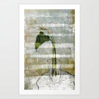 the arum Art Print