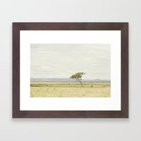 tree of life::kenya Framed Art Print