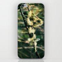 Magical Spring iPhone & iPod Skin