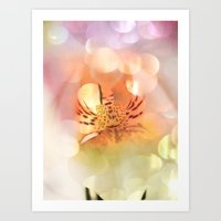 Pretty  Dreams Art Print